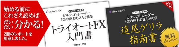 『トライオートFX入門書』『追尾ゲリラ指南書』